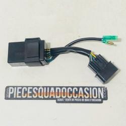 boitier de contrôle de vitesse quad 250 et 300 vector e-ton
