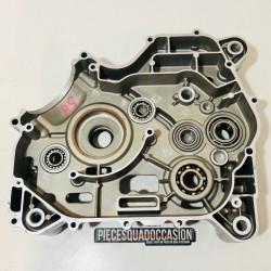 carter moteur droit quad DL700X dinli