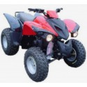 300 ATV
